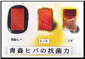 青森ひば抗菌試験